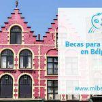 Becas para estudiar en Flandes, Bélgica