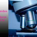 Becas en Estados Unidos para investigadores del área de la salud