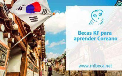 Becas para aprender coreano